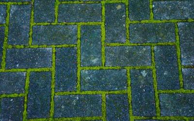 «Зеленая»  цементная смесь дает хороший эффект