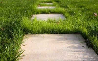 Что лучше - бетон или тротуарная плитка во дворе
